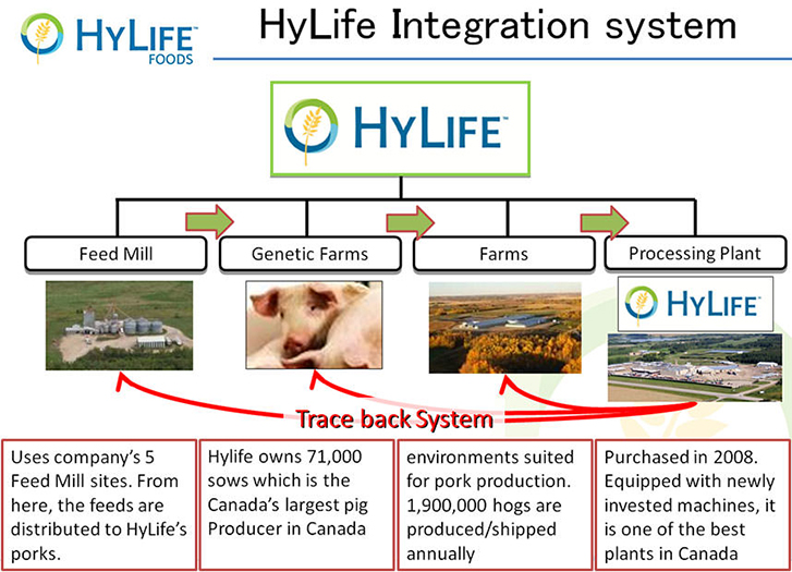Pork Meat Business in Canada -HyLife Group Holdings