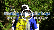 4th Borneo Island Tree-Planting Tour