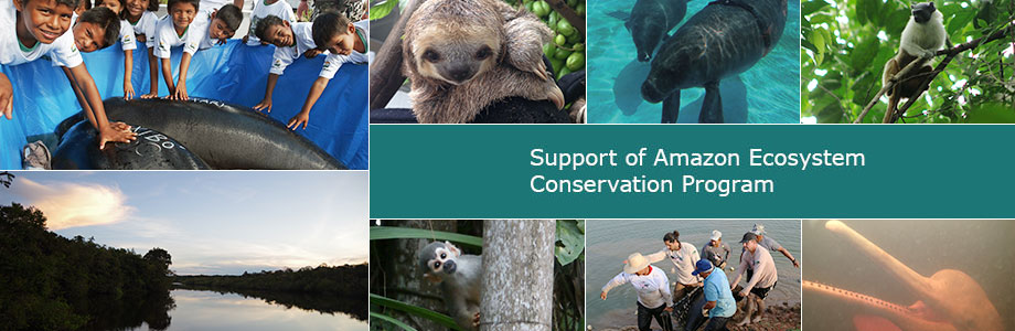 Support of Amazon Ecosystem Conservation Program
